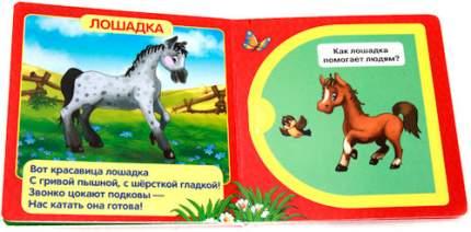 Книжка С Окошками Умка Домашние Животные (214334)