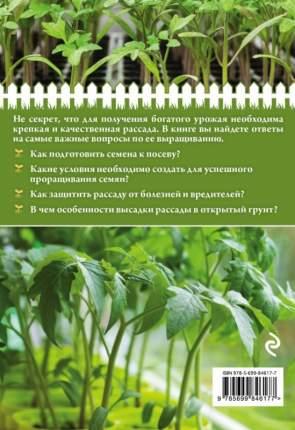 Здоровая рассада для сверхурожая