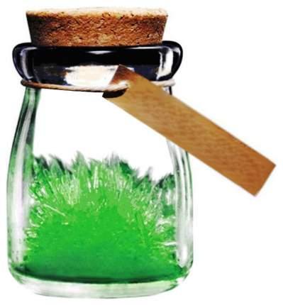 Набор для выращивания кристаллов Бумбарам Кристалл с пожеланием Здоровья