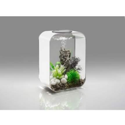Декорация для аквариума biOrb Sea star rock, камень с морскими звездами, 12х10х21см