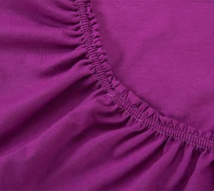 Простыня трикотажная на резинке (фиолетовая) 160х200х20