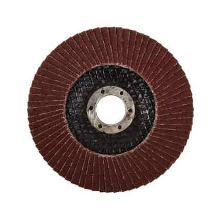 Диск лепестковый для угловых шлифмашин ЛУГА 3656-180-60
