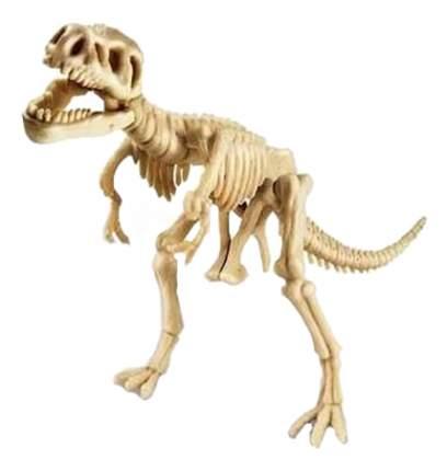 Набор для исследования 4M Скелет Тираннозавра