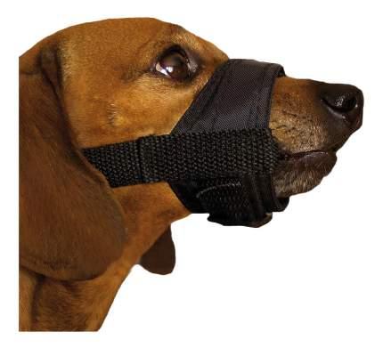 Намордник для собак  Дарэлл нейлон, регулируемый №5 22-31см черный