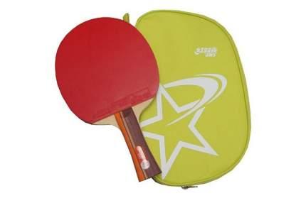 Ракетка для настольного тенниса DHS R2002, conc., Любительский R2002