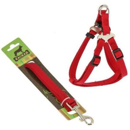 Комплект Поводок и шлейка Каскад нейлон красный для собак (120 см + 30/50 см, Красный)