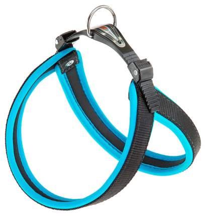 Шлейка для собак Ferplast Agila Fluo  (A=B 44/52см 20мм, Синий)