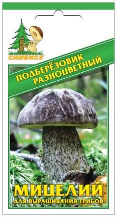 Мицелий грибов Зерновой Подберезовик Разноцветный, 30 мл Симбиоз