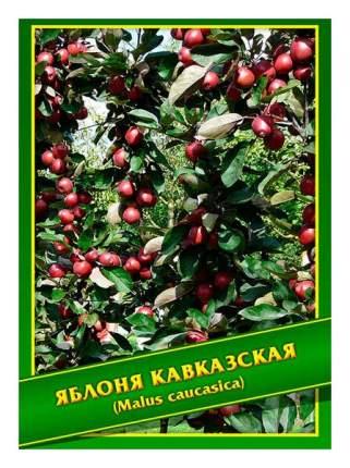 Семена Яблоня Кавказская, 0,5 г Симбиоз