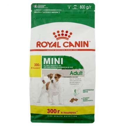 Сухой корм для собак ROYAL CANIN Adult Mini, для мелких пород, птица, рис, 0,8кг