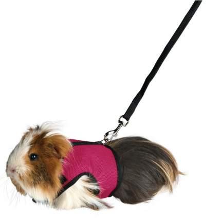 Поводок и шлейка TRIXIE для морских свинок, кроликов, розовый, красный
