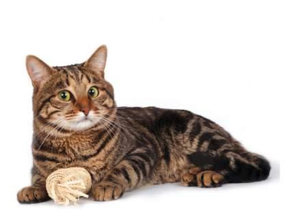 Жевательная для кошек Triol, Листья кукурузы, 11 см