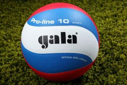 Волейбольный мяч Gala Pro-Line 10 Матчевый №5 blue/white/red