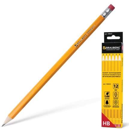 Набор карандашей чернографитных BRAUBERG 180635 Желтый 12 шт