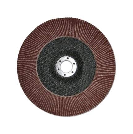 Диск лепестковый для угловых шлифмашин ЛУГА 3656-180-80