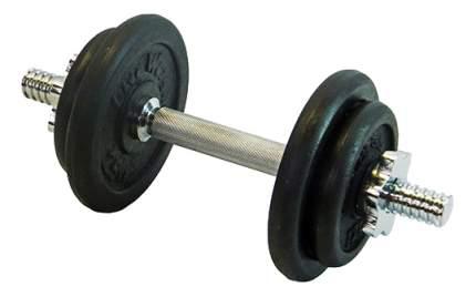 Гантель разборная Lite Weights 4542LW 25,4 мм, 9,43 кг