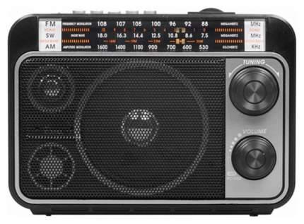 Радиоприемник Ritmix RPR-171 Black
