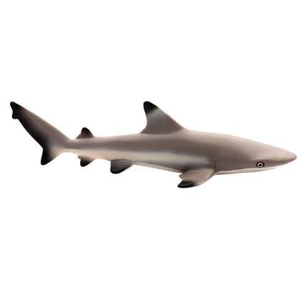 Фигурка Safari Ltd Рифовая акула