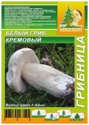 Мицелий грибов Грибница субстрат микоризный Белый гриб Кремовый, 1 л Симбиоз
