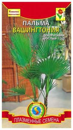 Семена Пальма Вашингтония, Смесь, 2 шт, Плазмас