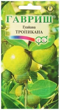 Семена Гуайава Тропикана, 0,2 г Гавриш