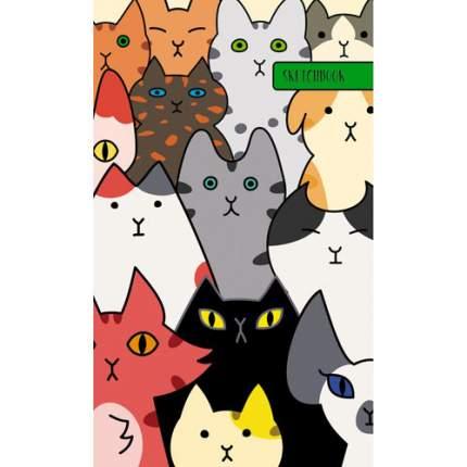 Скетчбук спираль (А5+ 80л 120г/м2) Собрание котов, ТС5804604