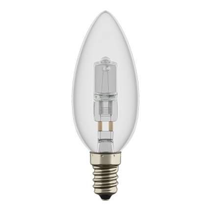 Галогенная Лампочка Lightstar 922940