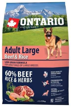 Сухой корм для собак Ontario Adult Large, для крупных пород, говядина и рис, 2,25кг