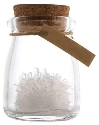 Набор для выращивания кристаллов Бумбарам Кристалл с пожеланием Удачи