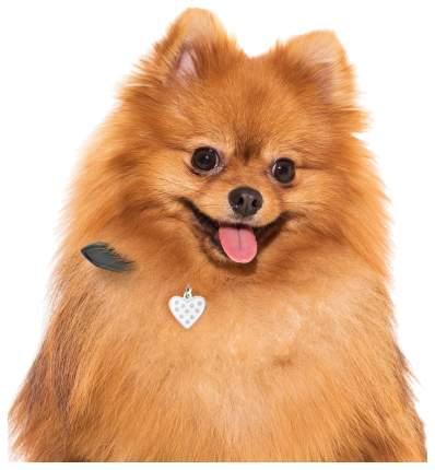 Адресник для кошек и собак My Family Chic со стразами в форме сердца (2 х 2 см, Белый)