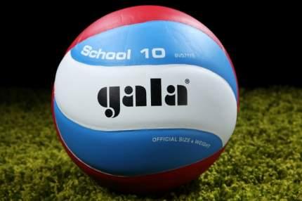 Волейбольный мяч Gala School 10 №5 blue/white/red