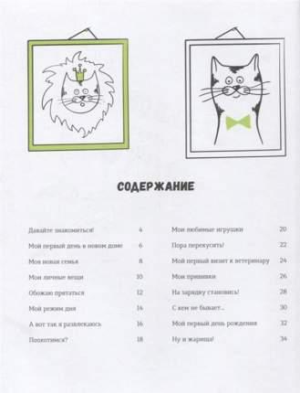 Моя кошачья Жизнь