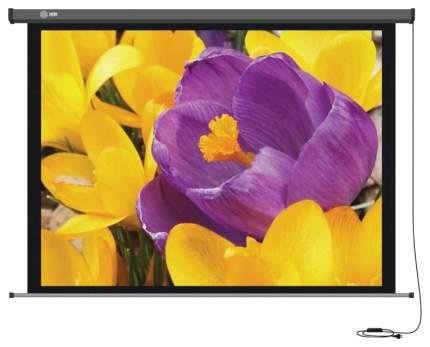 Экран для видеопроектора Cactus CS-PSPM-168X299