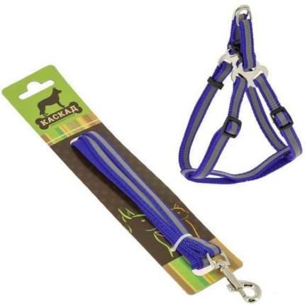 Комплект Поводок и шлейка Каскад нейлон светоотражающий синий для собак 120см + 30/50см