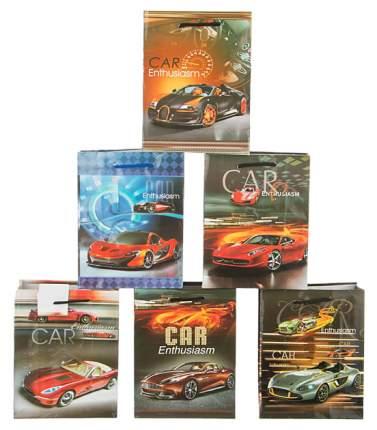 Пакет подарочный Lefard 565-313 Разноцветный