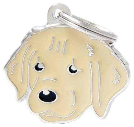 Адресник для собак My Family Friends Золотой ретривер (2,5 х 2,5 см, )