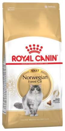 Сухой корм для кошек ROYAL CANIN Norwegian forest Adult, норвежская, домашняя птица, 0,4кг