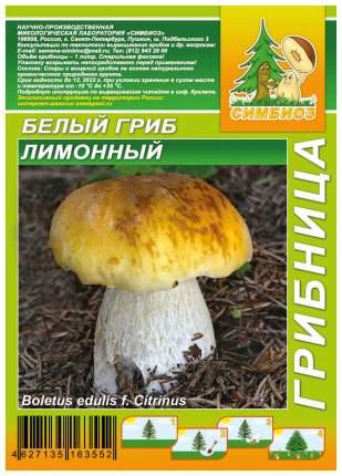 Мицелий грибов Грибница субстрат микоризный Белый гриб Лимонный, 1 л Симбиоз