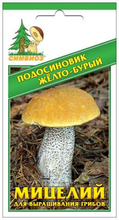 Мицелий грибов Зерновой Подосиновик Желто-Бурый, 30 мл Симбиоз