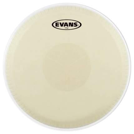 Пластик EVANS EC1250E