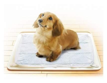 Лоток для собак Premium Pet Japan для собачьих пеленок 48х36х0,7 см бежевый