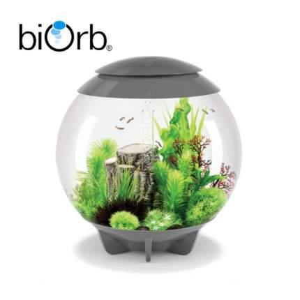 Искусственное растение для аквариума biOrb Малиновая морская лилия, 10х10х12см