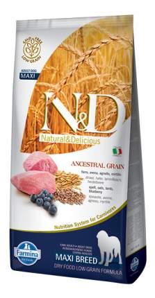 Сухой корм для собак Farmina N&D Maxi, для крупных пород, ягненок и черника, 12кг