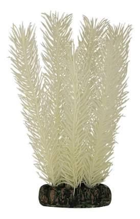 Laguna Растение светящееся Кабомба белая, 10 см