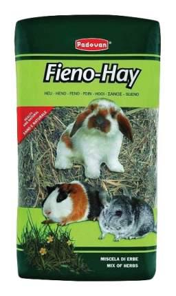 Сено для грызунов Padovan Fieno-Hay 1 кг 1 шт