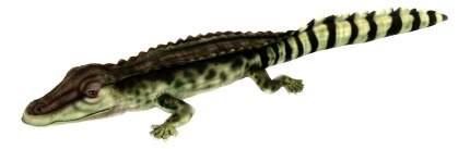 Мягкая игрушка Hansa Крокодил Филиппинский 72 см 6572