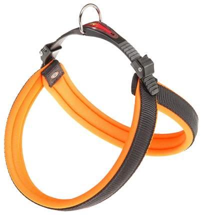 Шлейка для собак Ferplast Agila Fluo  (A=B 50/58см 20мм, Оранжевый)