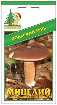 Мицелий грибов Зерновой Польский гриб, 30 мл Симбиоз