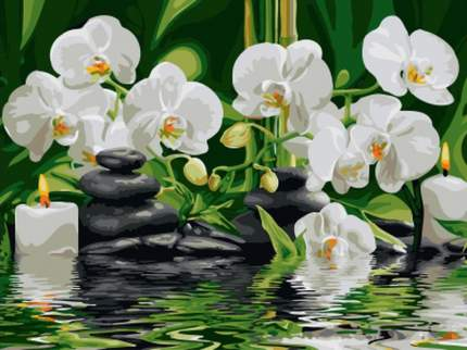 """Картина по номерам Paintboy """"Белая орхидея"""", 30x40 см"""