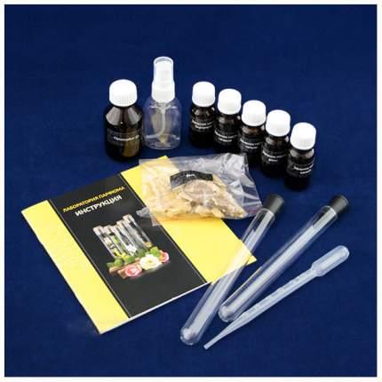 Набор для опытов Трюки науки Лаборатория парфюма